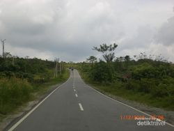 Taman Nasional Kutai Punya Pohon Usia 1.000 Tahun