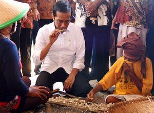 Jokowi Sedang Cari Waktu untuk Bertemu Obama di AS
