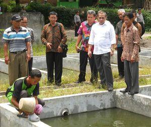 Cek Kesiapan Desa Terima Dana, Menteri Desa PDT Blusukan di Sleman