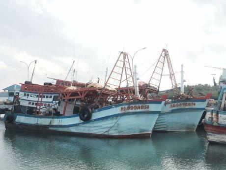 Lagi, 3 Kapal Asing Pencuri Ikan Ditangkap di Perairan Kepri