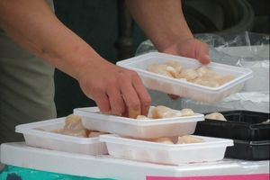 Blusukan Seru ke Pasar Ikan Tsukiji di Tokyo