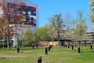 Taman di Denmark Punya Pohon yang Bisa Bernyanyi