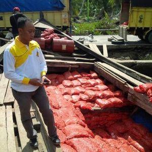 Polisi Amankan 45 Ton Bawang Merah Selundupan Asal Malaysia