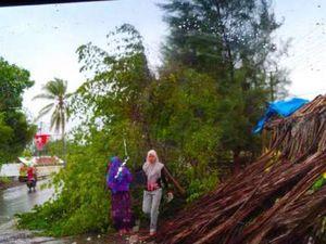 Hujan dan Angin Kencang di Aceh, 1 Warga Ditemukan Tewas Terhimpit Pohon