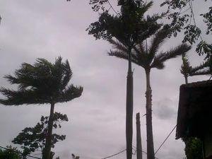 BMKG: Angin Kencang di Jakarta Bertahan Hingga Seminggu ke Depan