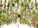 Canggih! Ada Taman Bunga Melayang di Jepang