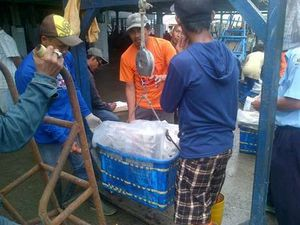 Pengunjung dan Pelaku Usaha Keluhkan Pungli di TPI Muara Angke
