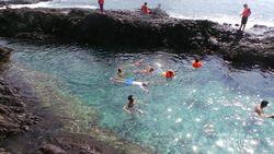 Tak Hanya Lumba-lumba, Teluk Kiluan Juga Punya Laguna Keren