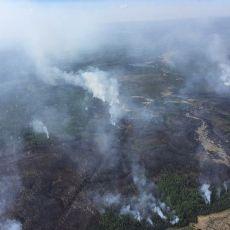 Kebakaran Hutan di Kanada Paksa 7 Ribu Orang Mengungsi