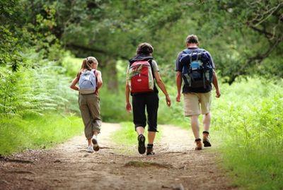 Naik Gunung Bareng Anak, Ingat 5 Hal Penting Ini