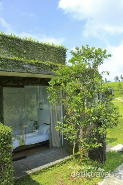 Dekat dengan alam di tea Garden Resort