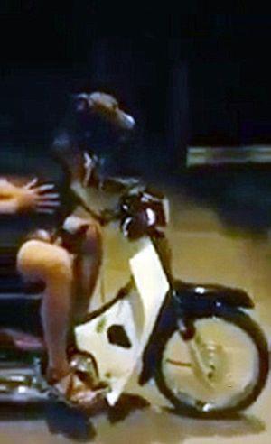Ajari Anjingnya Naik Motor Bebek Keliling Kota, Pemuda Ini Didenda Rp 4 Juta