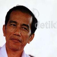 Jokowi: Kita Punya Panas Bumi Tapi Belum Tergarap Maksimal