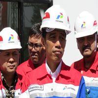Jokowi Janji Beri Insentif di Proyek Energi Terbarukan ke Investor