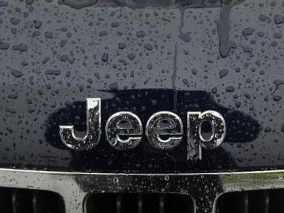 Gandeng Tata Motor, Mulai 2017 Fiat-Chrysler Produksi Jeep di India