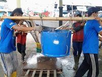 Susi Berantas Illegal Fishing, Stok Ikan Jelang Lebaran Melimpah