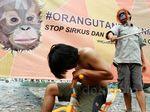 Aksi Stop Eksploitasi Orangutan