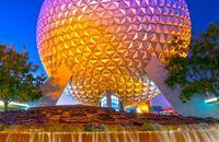 Liburan ke Disneyland, 3 Turis Wanita Malah Adu Jotos