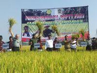 Mentan Sebut Hanya 8.000 Hektar Sawah Gagal Panen Tahun Ini