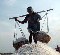 Ada El Nino, Produksi Garam Lokal Justru Diuntungkan