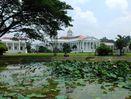 5 Alasan Kenapa Harus Akhir Pekan di Bogor