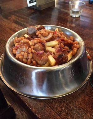 Wouw! Makan dari Wadah Makanan Anjing Sedang Jadi Tren di Inggris