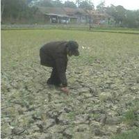 FAO Ingatkan Negara di Dunia Soal Kekeringan Hingga Akhir Tahun