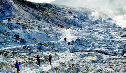 Menikmati Indahnya Gunung Papandayan di Garut
