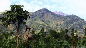 200 Hektare Lahan di Merbabu Hangus Terbakar, Pagi ini Api Masih Menyala