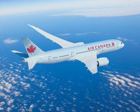 Demi Selamatkan Anjing, Pesawat Air Canada Mendarat Darurat