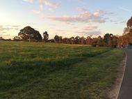 Melawan Udara Dingin Melbourne Dengan Berlari