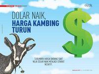 Dolar Naik, Harga Kambing Turun