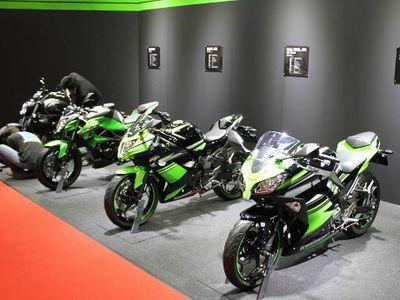 Kawasaki Kenalkan Dua Warna Baru Ninja 300