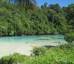 Laguna Cantik di Pulau Kakaban