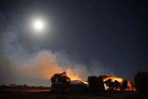 Jalan Dibuka Kembali di Australia Selatan, 35 Rumah Hancur Karena Kebakaran Semak