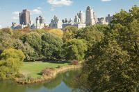 Di New York, Merusak Taman Dendanya Rp 200 Juta!
