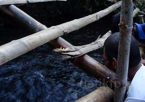 Sawah Tandus di Probolinggo Semburkan Air