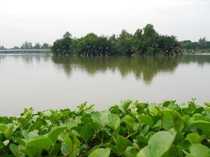Mencari Ketenangan di Pinggir Kota Ho Chi Minh