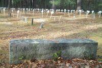 Pemakaman Unik di Amerika, Nisannya Bentuk Lolipop