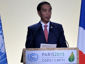 Jokowi Pidato di Conference of Parties