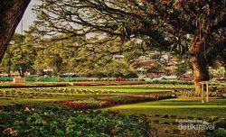 Hijau dan Indah, Ini Makam Tentara Sekutu di Ambon