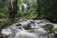 Lebih Dekat dengan Alam di Kelok Inang-inang Aceh