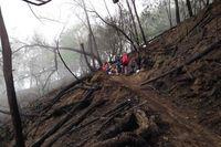 Mengenang Pendakian Terakhir Sebelum Semeru Ditutup