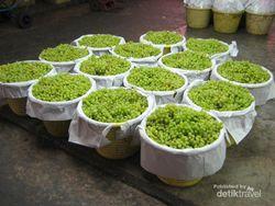 Wisata Beda di Thailand, Belanja Buah di Pasar Induk