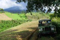 Weekend Super Seru! Offroad Keliling Perkebunan Teh di Bogor