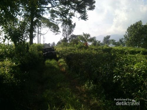 Begini Serunya Offroad di Bogor