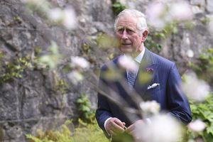 Heboh Warga Inggris Soal Isu Pangeran Charles Gay