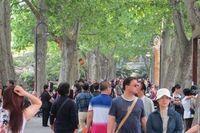 Duh, 38 Turis China Ditelantarkan Pemandu Wisata di Thailand