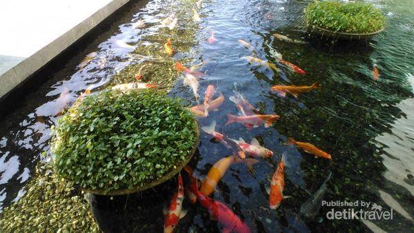 Memaknai Pentingnya Air Di NEWater Singapura