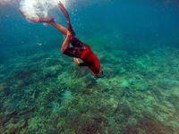 Seperti Ini Keindahan Alam Bawah Laut Pulau Sangiang